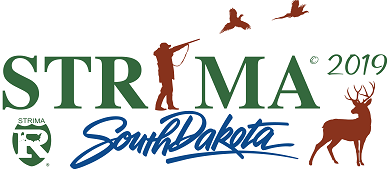 2019 STRIMA Conference