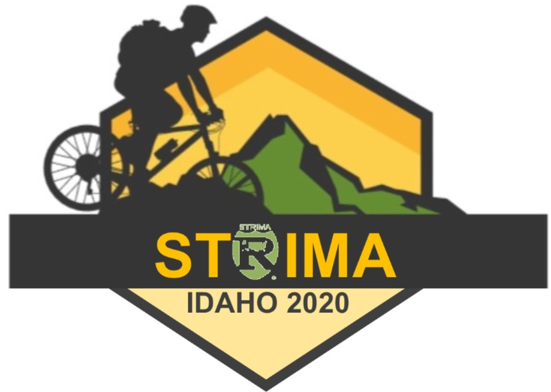 2020 STRIMA Conference